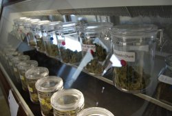 Medical marijuana is for sale legally at the 45th Parallel dispensary in Ontario, Ore.