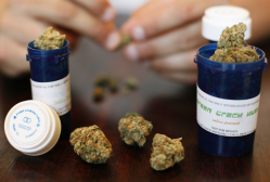 Health Canada has faced court challenges over medical marijuana eight times and has lost all of them. In each case the decision came because the court felt regulations were too restrictive for those seeking legal marijuana.