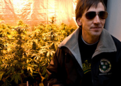 Pot entrepreneur Richard Lee envisions a professional marijuana industry much like the one that exists in Amsterdam.
