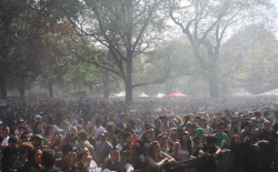 Thousands light up in Toronto for the 2010 Global Marijuana March. (Photo by Sol Sadie)
