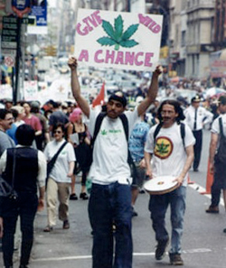 The Global Marijuana March in New York City.
