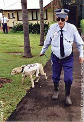 Costumed carnival cop, mocking the sniffer dogs