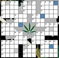 Crossword from CC55