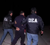 DEA arrests keep going up