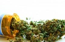 cannAbility-foundation-medical-marijuana