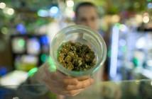 vancouvermedicalmarijuanaprice