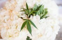 Marijuana-Wedding-Plum-Sage-Puddle-Jumpin-4