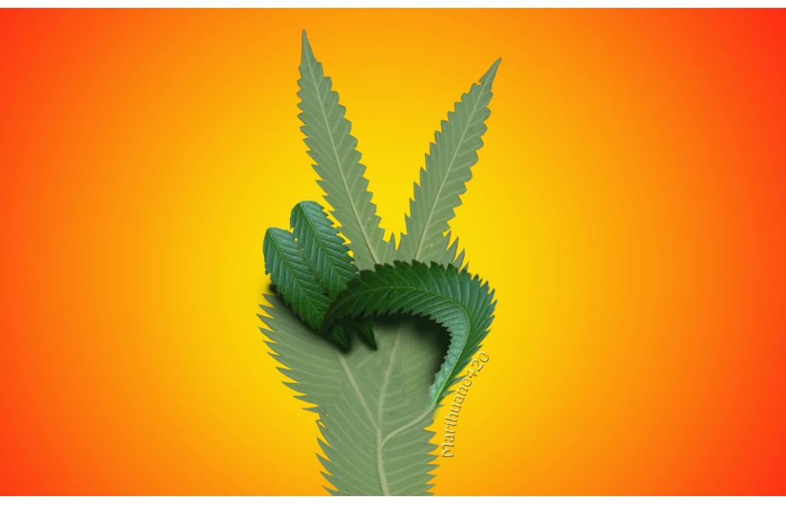peace_hand_in_marijuana_by_marihuano420-d7za7k7