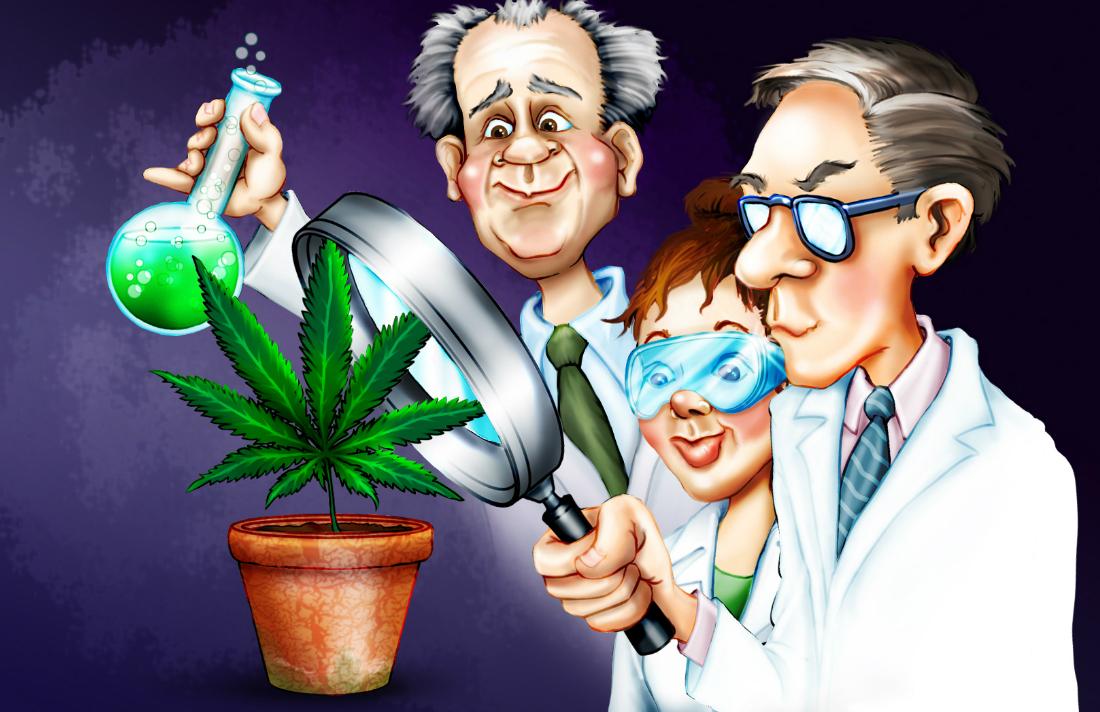 pot-marijuana-science-cartoon-hbtv-hemp-beach-tv