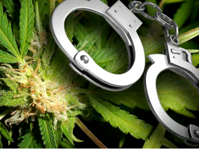 PotMatters-DEA-CannabisPrisoners_0