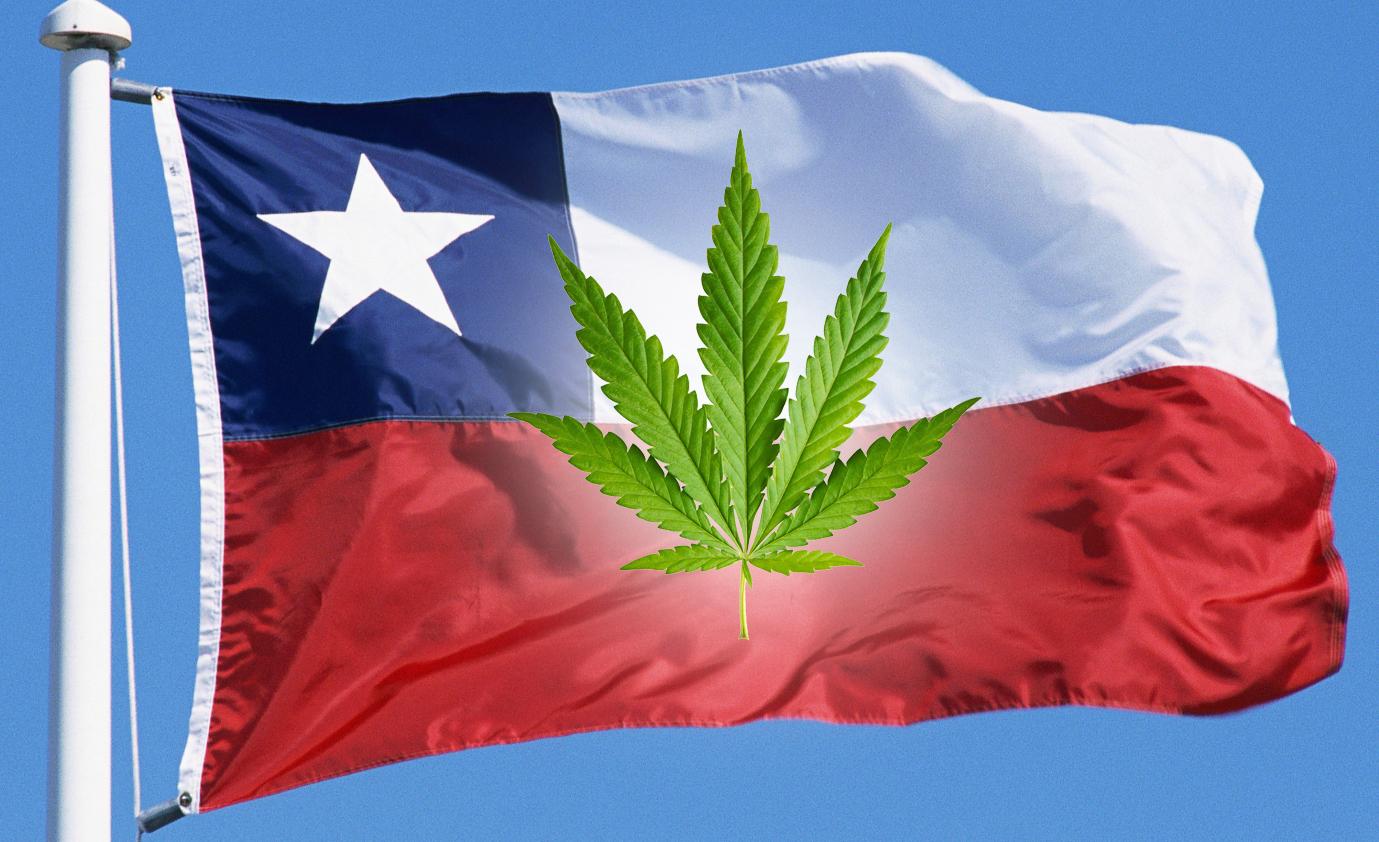 chile-marijuana