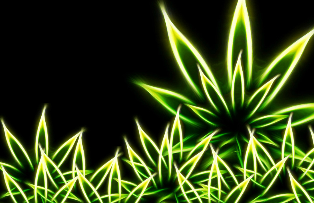 weed-wallpaper-301