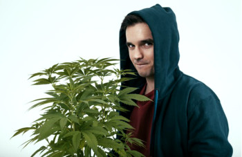 man-holding-marijuana-plant-getty_large
