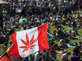 flag-a-marijuana-flag-flaps-in-the-wind-above-the-crowd-at-t