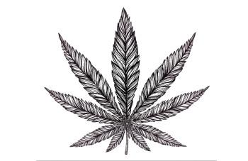 stock-vector-hemp-cannabis-leaf-in-vintage-linear-style-marijuana-silhouette-clip-art-concept-design-elegant-288690245