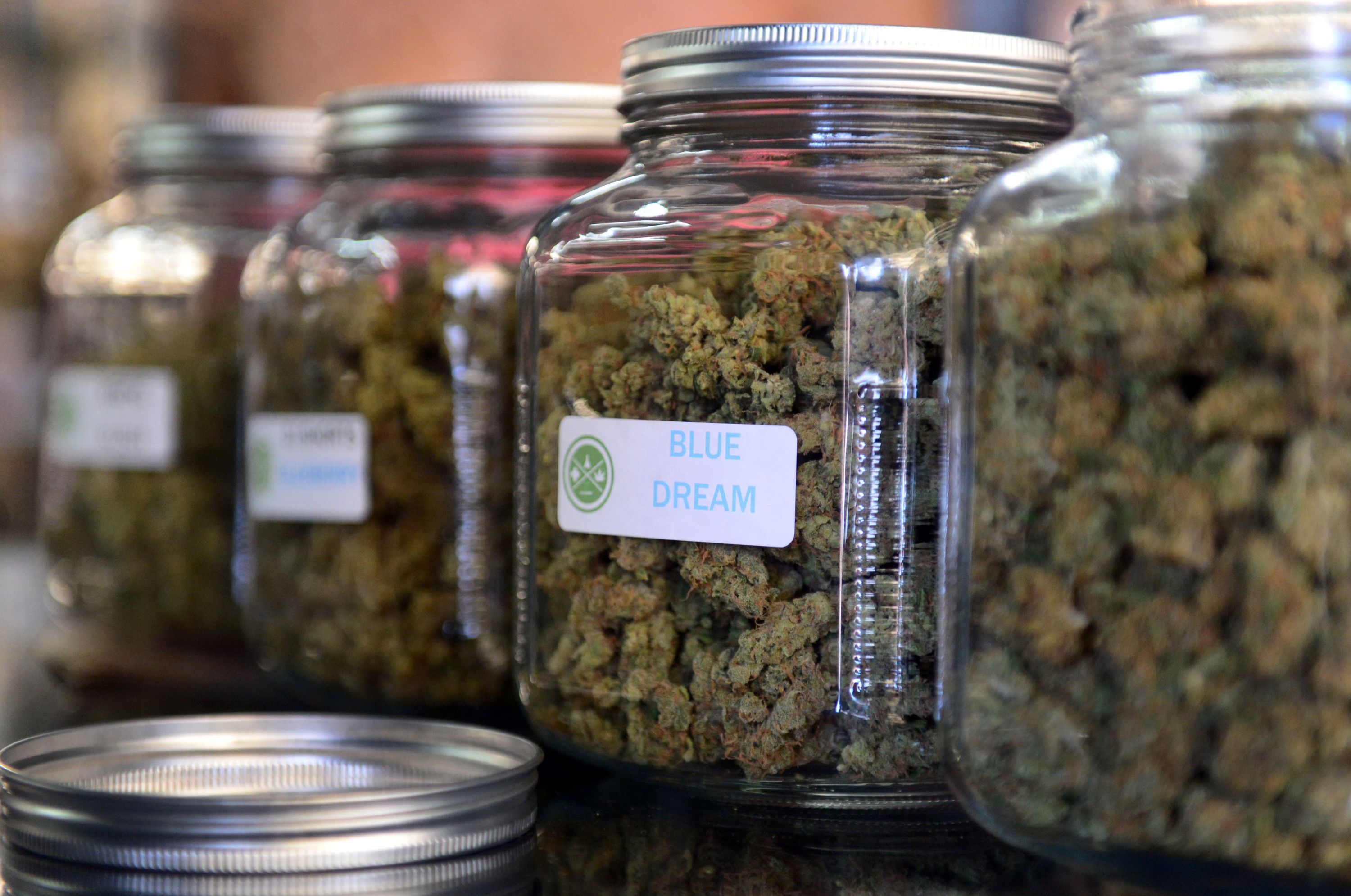 The highly-rated strain of medical marijuana 'Blue Dream' is displayed among others in glass jars at Los Angeles' first-ever cannabis farmer's market at the West Coast Collective medical marijuana dispensary, on the fourth of July, or Independence Day, in Los Angeles, California on July 4, 2014 where organizer's of the 3-day event plan to showcase high quality cannabis from growers and vendors throughout the state. A vendor is seen here responding to questions and offering a whiff of the strain 'Skyjack'.  AFP PHOTO/Frederic J. BROWN
