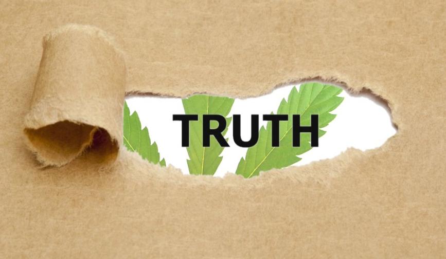 Marijuana Lies
