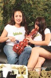 Oaksterdam girls in Oaksterdam shirts
