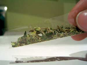 Transparent paper with weed inside