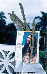 Bob Marley lives.