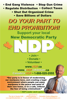 12 x 18 NDP Poster