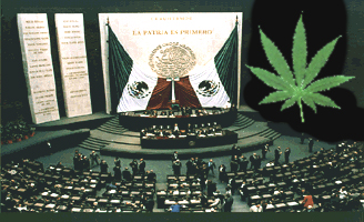 Inside Mexican Congress