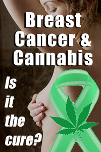 More and more studies prove cannabis fights cancer