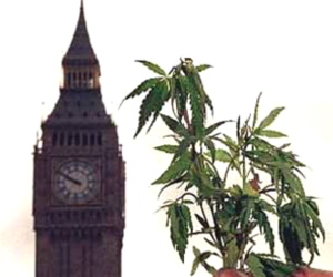 Cannabis and Big Ben in England