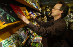 Marc Emery works in his Vancouver store in January 2008. Emery is to surrender himself in B.C. Supreme Court on Sept. 28, 2009. (Photo by Ward Perrin)