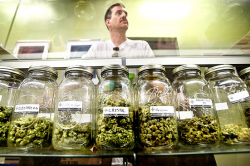 Jars of medicine at Private Organic Therapy, a medical-marijuana dispensary in Los Angeles.