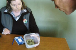 Veronica Curie of the Always Growing Green Society sells a 'UBC', a strain of medicinal marijuana to a customer. (Photo by Colleen Flanagan)