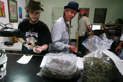 Steve DeAngelo, right, founded a marijuana dispensary in Oakland, Calif., and is on the board of an industry trade group.(Photo by Jim Wilson.)