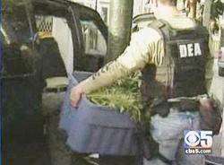 DEA agents raided Emmalyn's California Cannabis Clinic on Howard Street in San Francisco on Wednesday.
