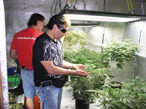 Dr. Jiminez of Medical Marijuana Hawai'i with cannabis expert, Brian Murphy, in background