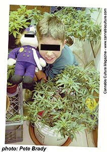 Young Jeremy; brownie baker or cannabis criminal?