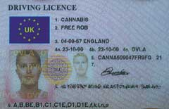 Right there on his Babylon-issued license: Free Rob Cannabis