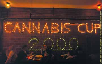 Cannabis Cup 2000 lounge