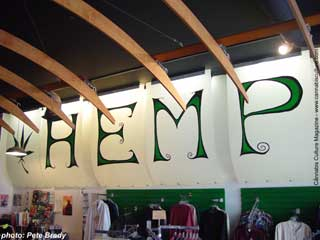 Hemptations` wall statement.