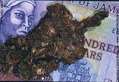Jamaican currency, and something to light your joints with.