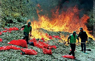 Bolivian authorities incinerating twenty tons of locally-grown coca leaf.