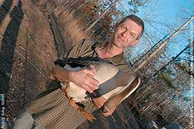 Nall`s husband holds one of their geese suspected of ingesting marijuana scraps