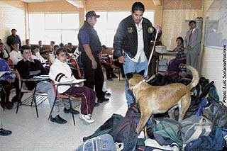 Police and drug dogs: teaching kids that school is a prison.