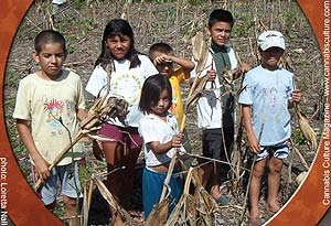 Columbian children with dead legal crops