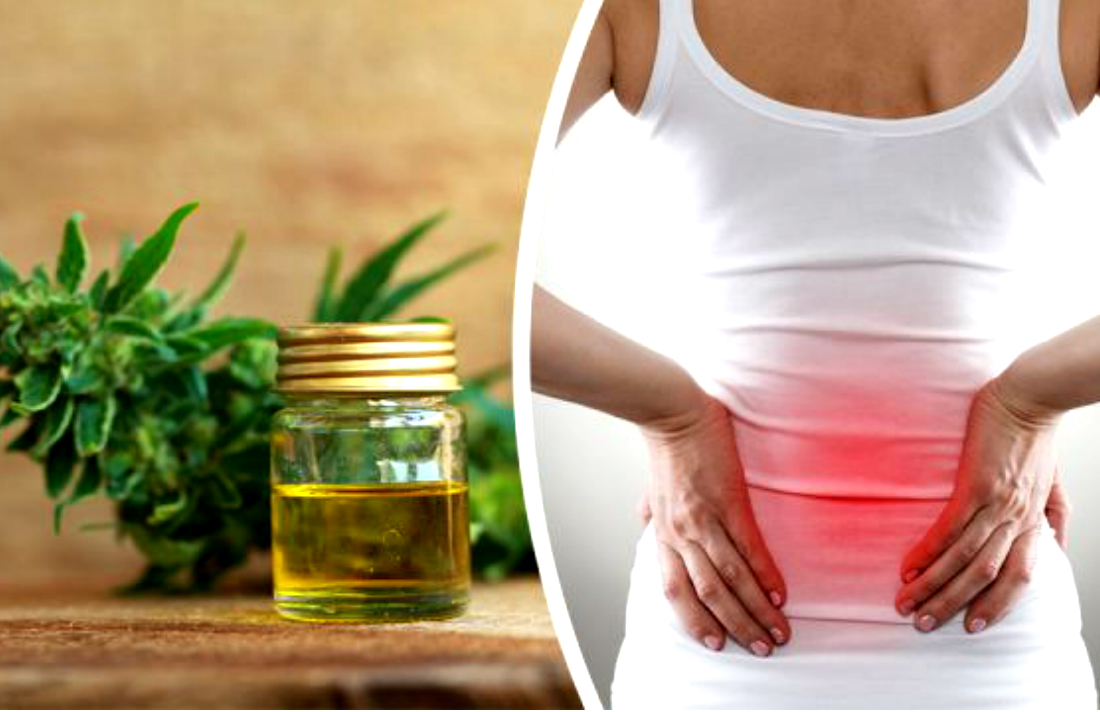 This Homemade Coconut Oil CBD Recipe Will Get Rid of Pain Instantly