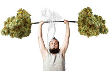 highandstrongworkout1313 350x227 - Forget Protein Shakes. The Newest Workout Supplement? Marijuana.
