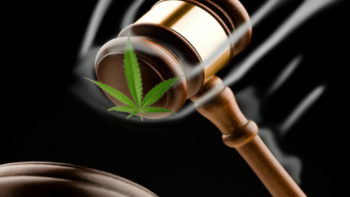 justice 350x197 - Judge Rules Florida Cancer Patient Can Grow His Own Cannabis