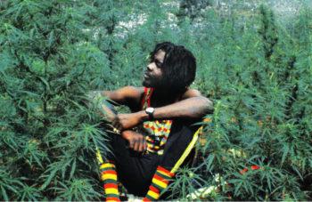 o MARIJUANA JAMAICA facebook 350x227 - Toker Travels: How to Buy Marijuana Legally in Jamaica