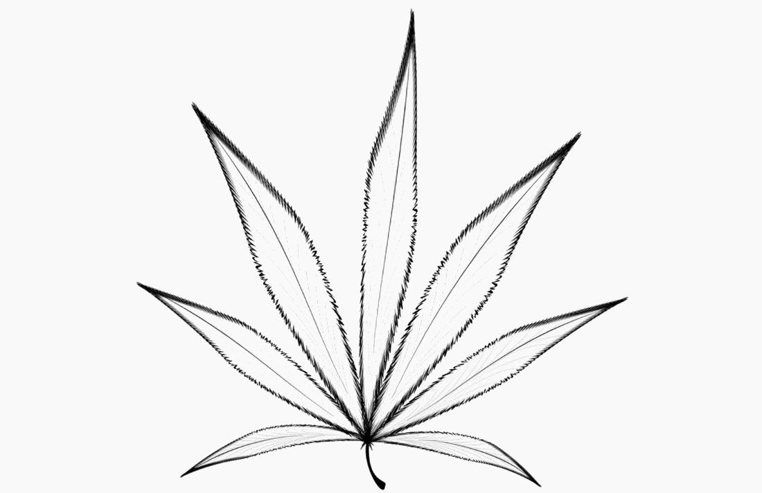 Cannabis Marketing Rules Still Hazy Post-Legalization
