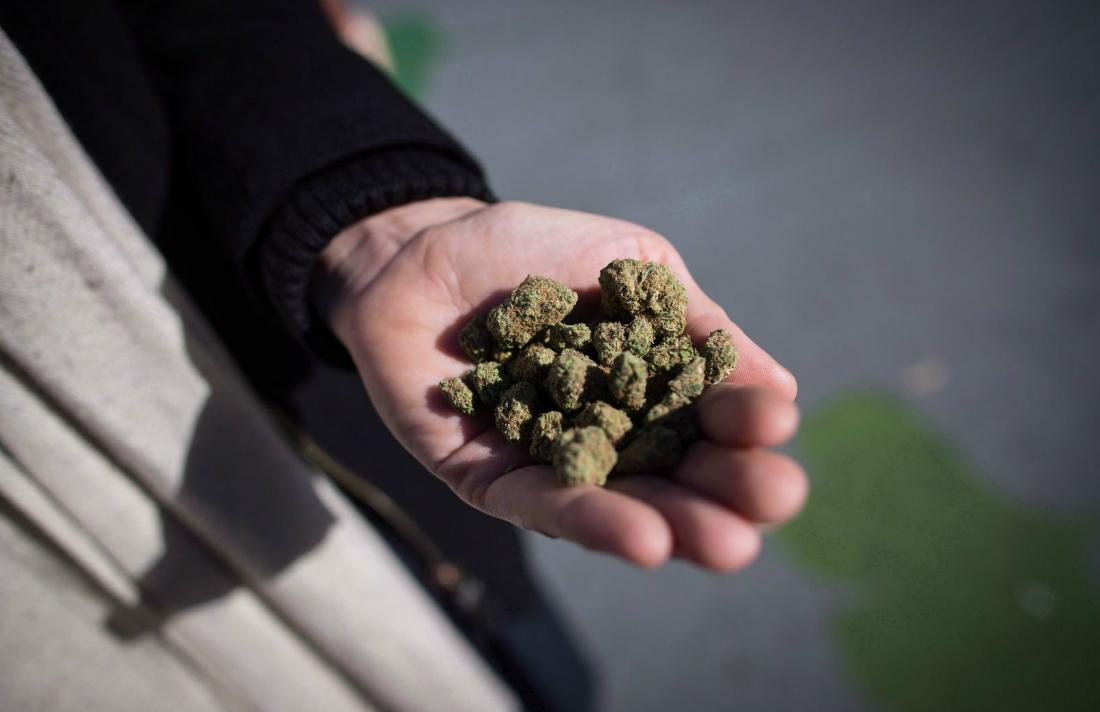 cannabisculture.com - Greg Mercer - Cannabis Black Market Focuses on Online Stores