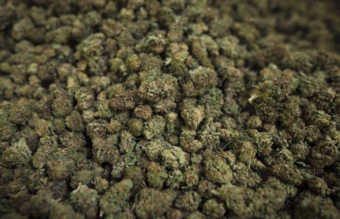Manitoba Cannabis Producer Issues Recall thumbnail